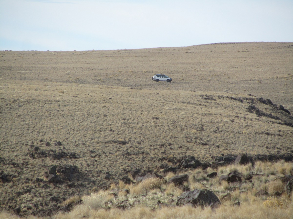 Moby Goes on a Wild Chukar Chase
