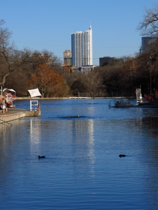 Barton Springs maintains a temperature of about 70 degrees and has an average flow of about 31 million gallons/day. (3 points)