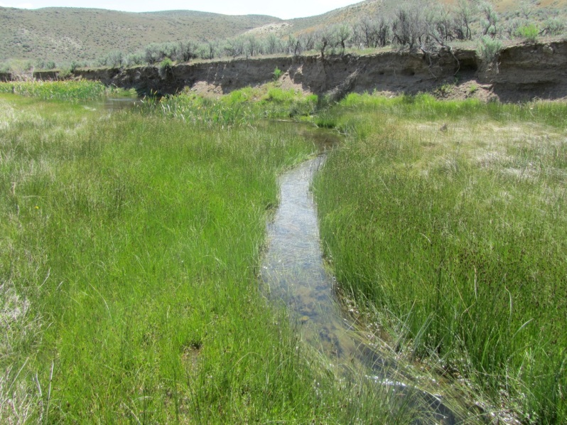 1-actual streamflow
