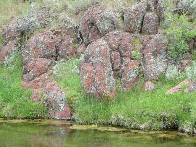6-red rocks and lichens