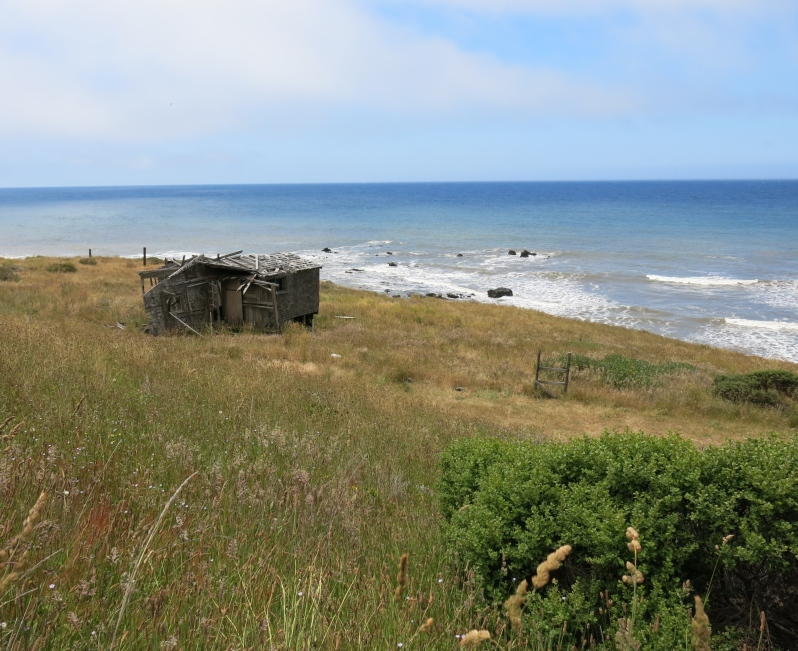 We were surprised to learn that this section of the coast had once attracted many homesteaders. Their lonely cabins are still standing.