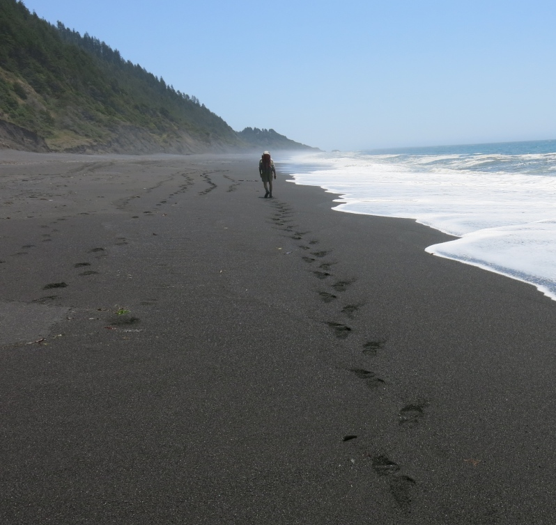 After three days of slogging through the sand and picking up strange things off the beach, Larry decides he's had enough. Good-bye lost coast . . .