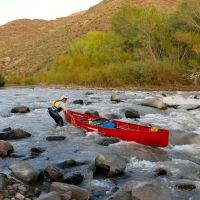 Moby Goes to the Gila River