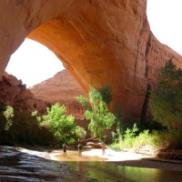 Moby Goes to Coyote Gulch