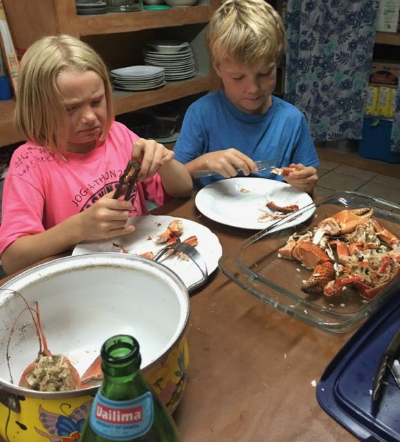coco-crab