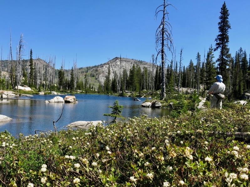14 Horton Lake