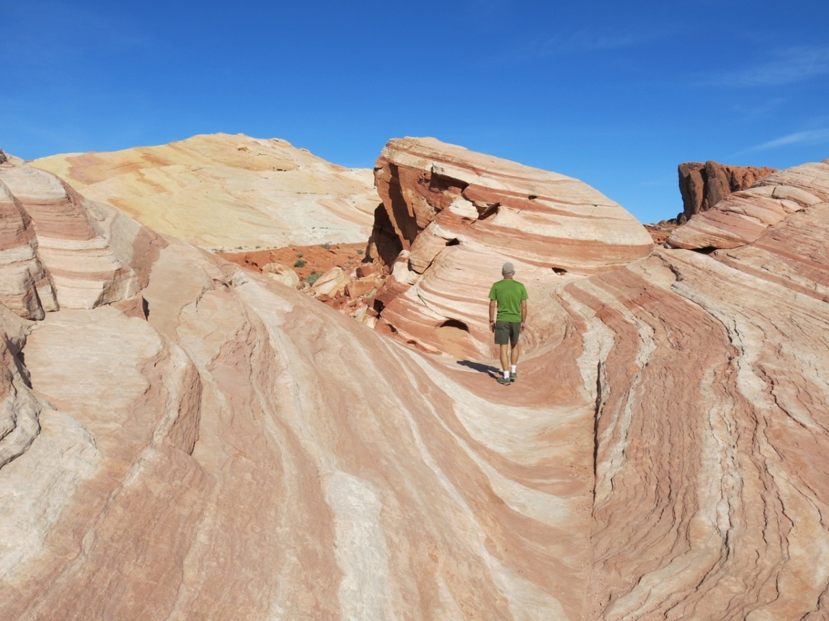 Moby Goes to The Valley of Fire