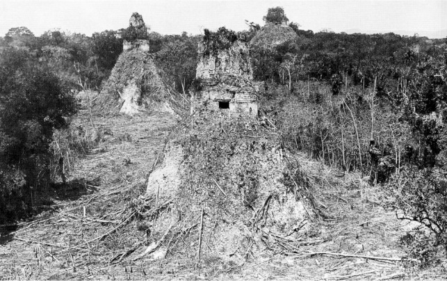 Tikal1882