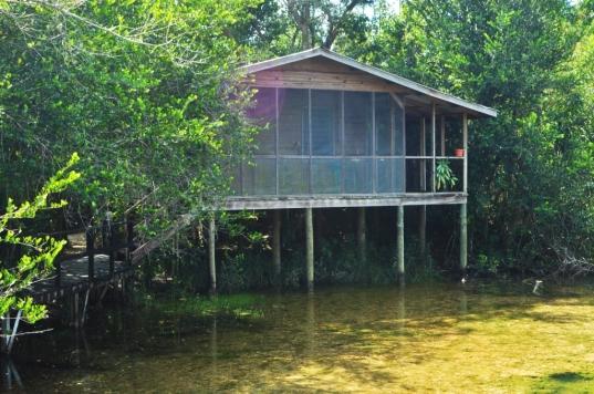 cabin zoo